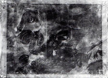 Canestra di Frutta di Caravaggio - Radiografia