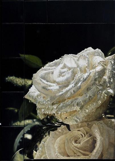 Roberto Camparenut - Altre Rose Bianche