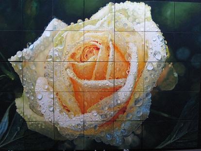 Roberto Camparenut - Rosa Bianca