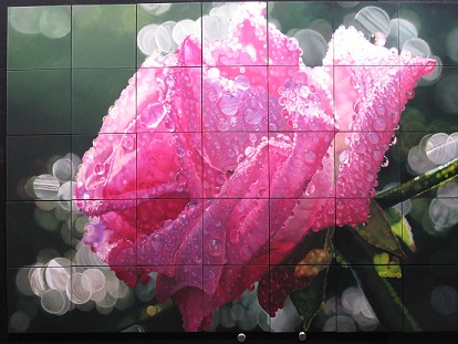 Roberto Camparenut - Rosa Composita