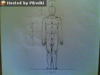 body8