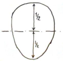 Caricatura e Forma della Testa