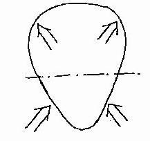 caricatura forma testa
