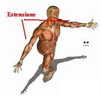 figura-umana-drappeggio-estensione
