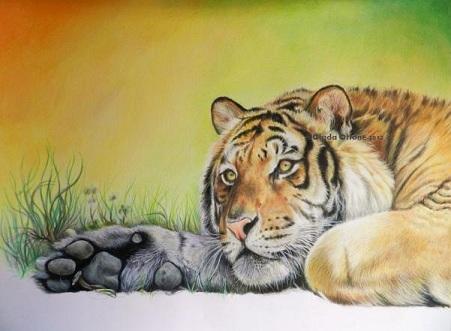 Colorare Sfondo della Tigre