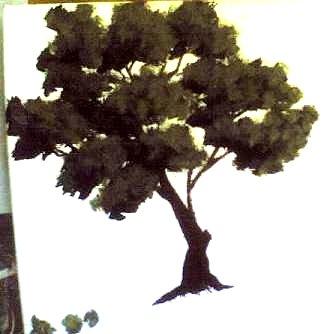 dipingere albero