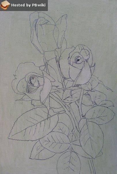 rose-fig2