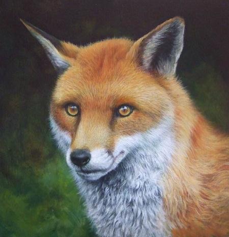 Dipingere una volpe ad acrilico - Occhi, naso, muso e schiena